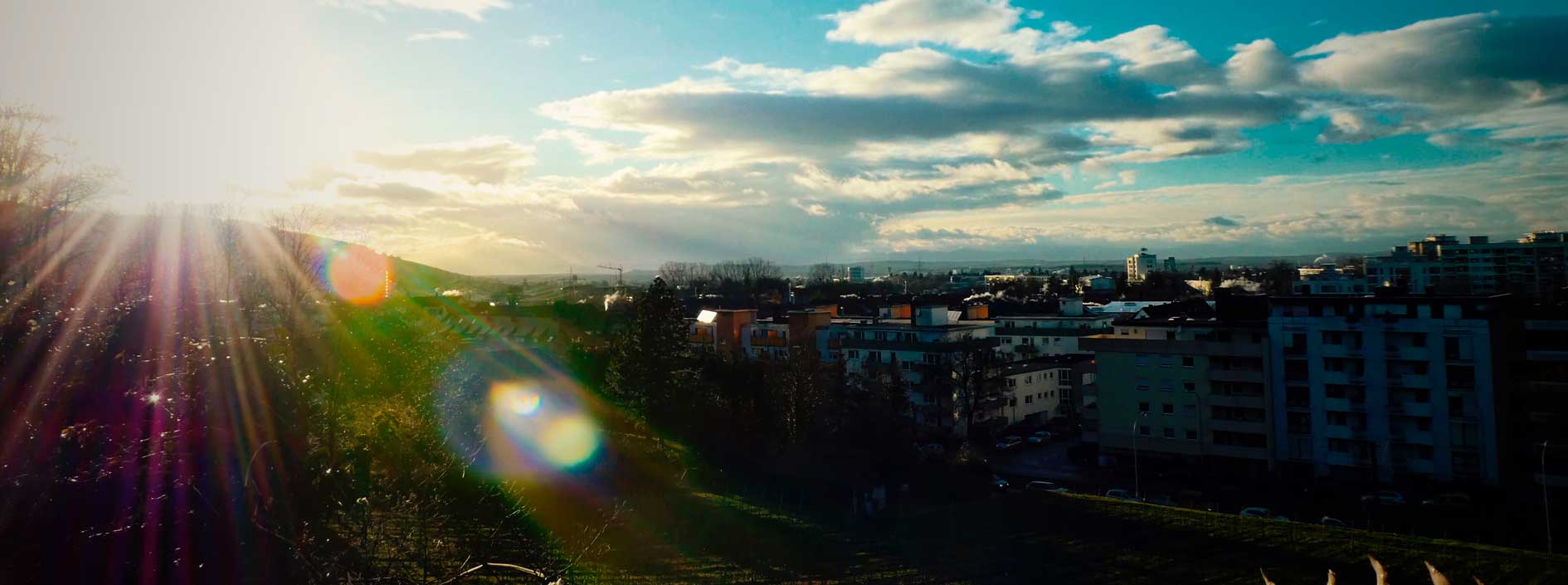 te-veo_stephanie-zeller_johannesguendel_Freiburg-Merzhausen